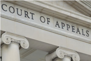 Florida Family Law Appeals